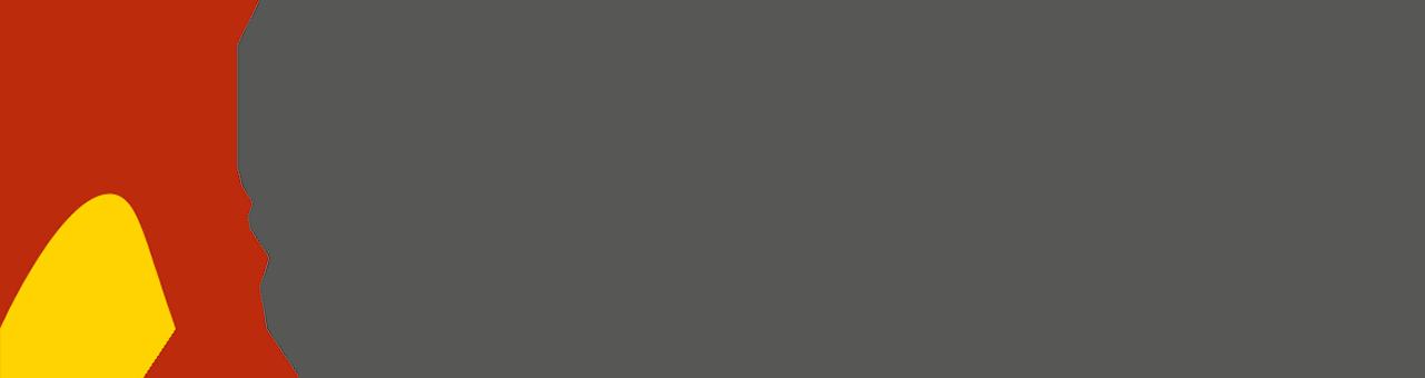 Schindler und Scheibling AG